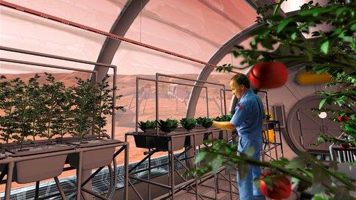 الصين تستعد لزراعة الخضروات القمر